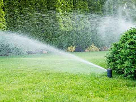 Irrigation and lawn care system design, installation and maintenance
