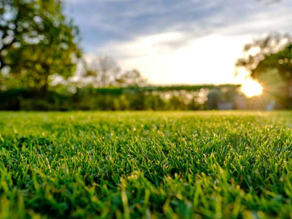 Irrigation and aeration services from Turf Unlimited Inc.