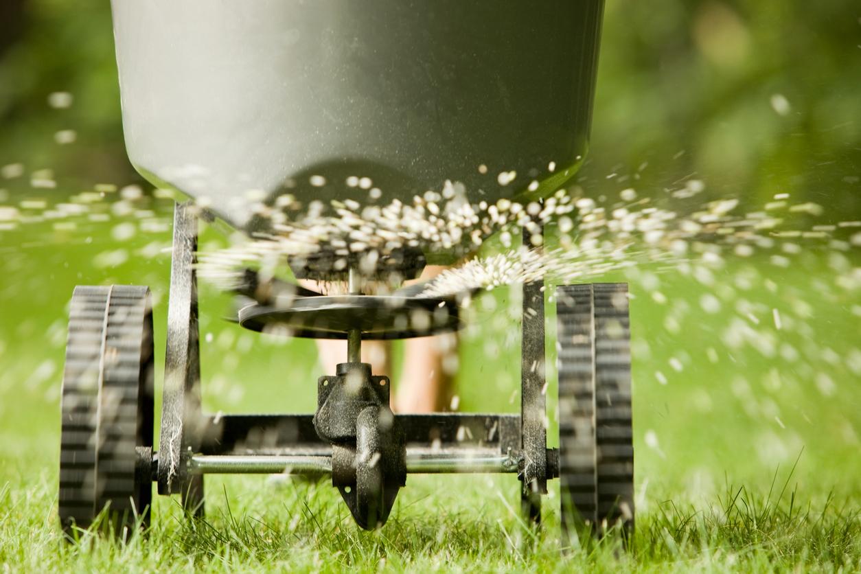 lawn care services in MA