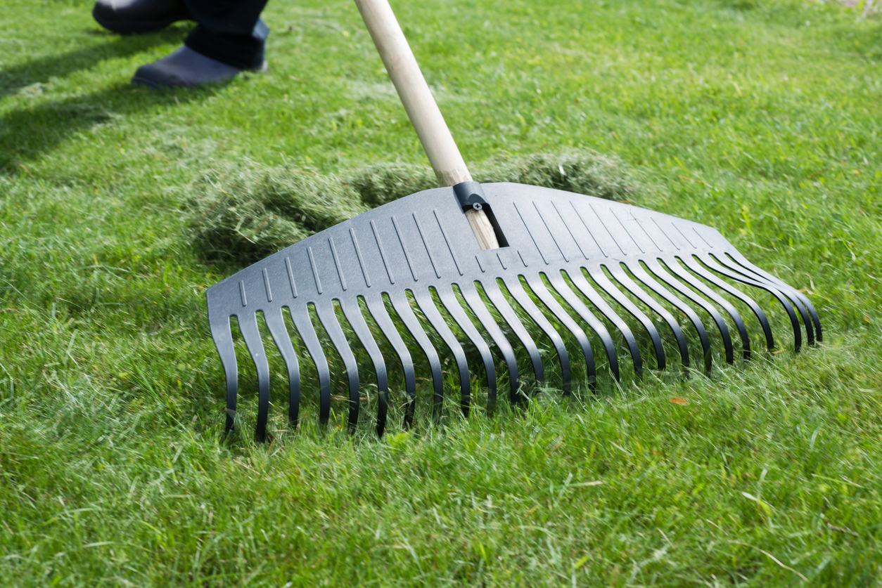 5 Lawn Prep Tips   Lawn Care Service Nashua NH   Acton MA   Chelmsford MA