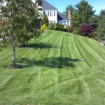 Lawn care services for a vibrant radiating yard. Organic fertilization available.