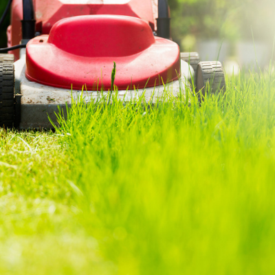 fall lawn care mow your lawn