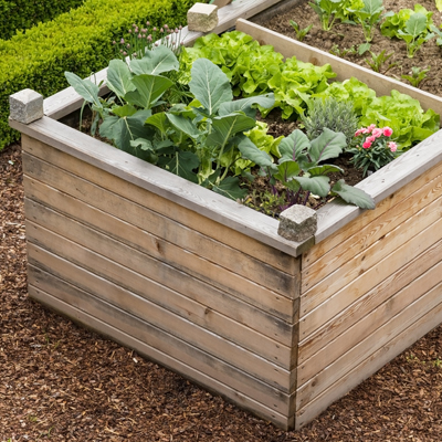 raised garden bed, gardening