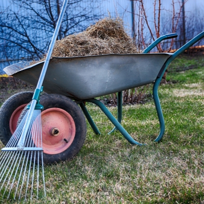 Dethatching your lawn will give it a healthy start this spring in Andover, MA