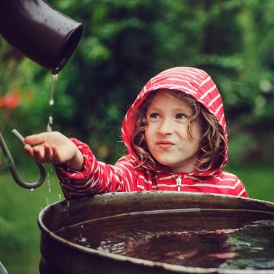 A rain barrel, or rain catcher, is a great DIY irrigation system that requires very little maintenance and offers your lawn a free source of storable water.