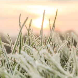 Make sure you winterize your sprinkler system before the first hard freeze here in Hudson, MA.