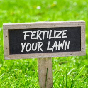 All of the best lawn care goals for the new year start with fertilizing your Massachusetts lawn on a regular basis.