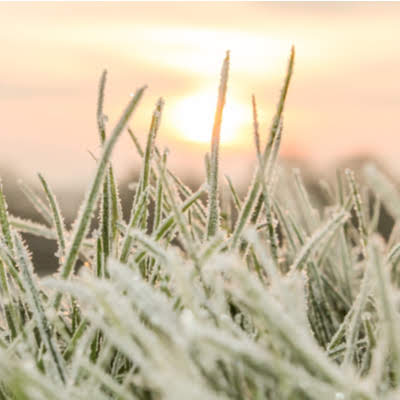 Before doing your spring sprinkler start up, you must wait until the last frost of the year to avoid potentially damaging the sprinkler system.